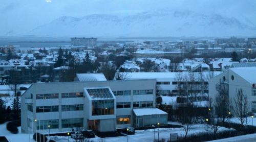 Not a bad view from the Hilton Reykjavik, the meeting point for 2020 Vision, but this isn't one of those conferences where you're stuck inside looking out all week.