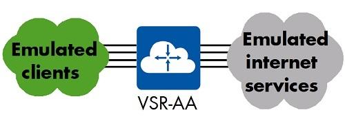 Figure 7: VSR-AA - Logical Test Setup