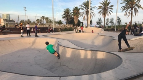 My hotel was the AC Hotel Barcelona Forum, located a short walk from the OpenStack conference center. It's also a short walk to the beach, and this skate park.
