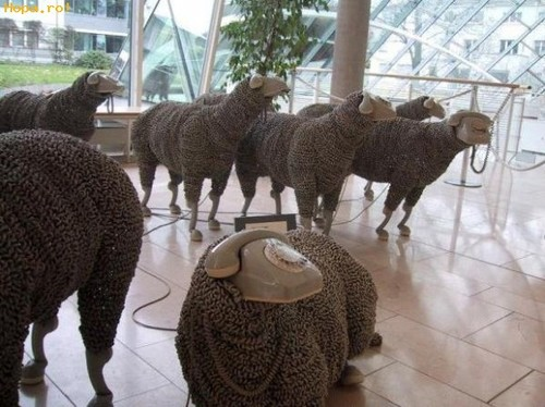 Rotary phone sheep sculptures by Jean Luc Cornec, exhibited at the Museum of Communications in Frankfurt. You can find more photos here.
