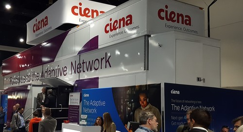 Ciena is looking to pump up its software unit.