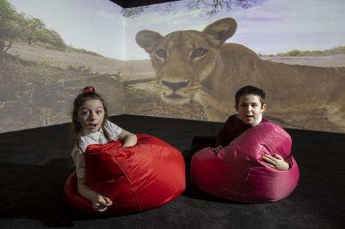 More fun than algebra: Kids in Scotland enjoy the immersive learning experience.