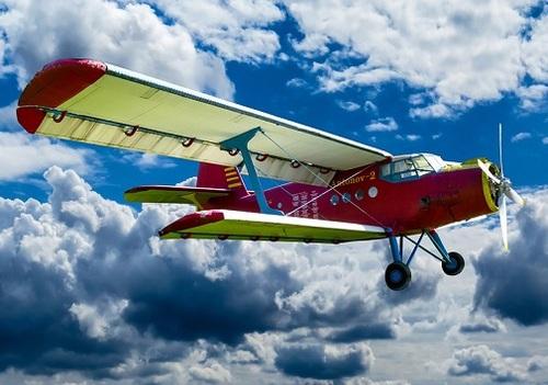Flying high (Source: Gellinger via Pixabay)