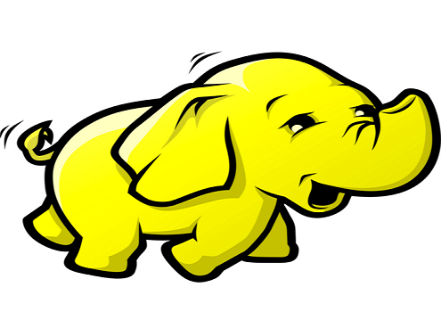 The elephant in the room.  