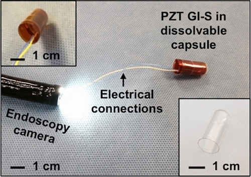 The sensor 2 by 2.5cm and can be wrapped in a material which dissolves when ingested. Images: MIT / Brigham and Women's Hospital