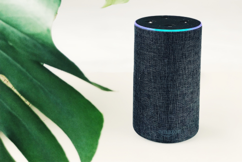 Amazon's Echo line is becoming more and more popular in UK homes. (Image: Jan Kolar, Unsplash)