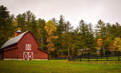 If the merger is okayed, the new T-Mobile could offer fixed mobile to rural homes, said Sprint's  Saw. (Source: Frances Gunn Unsplash)