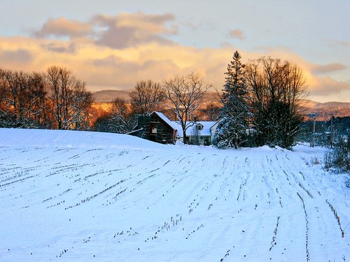 Vermont law prevents taxpayer subsidies of broadband infrastructure or services, one reason so many residents in the rural state lack fiber-based Internet.
