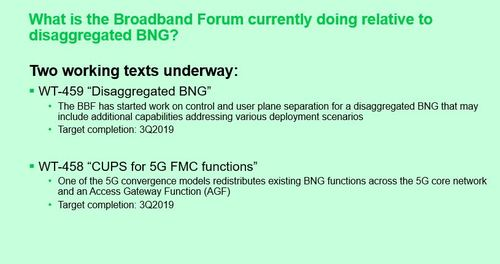 It's early days yet, but the Broadband Forum workgroup is considering whether one of two protocols is right for disaggregated BNG. (Source: David Sinicrope, Broadband Forum)